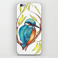 Kingfisher on Willow iPhone & iPod Skin