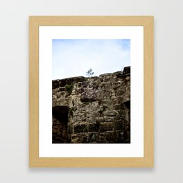 Tenacity Framed Art Print