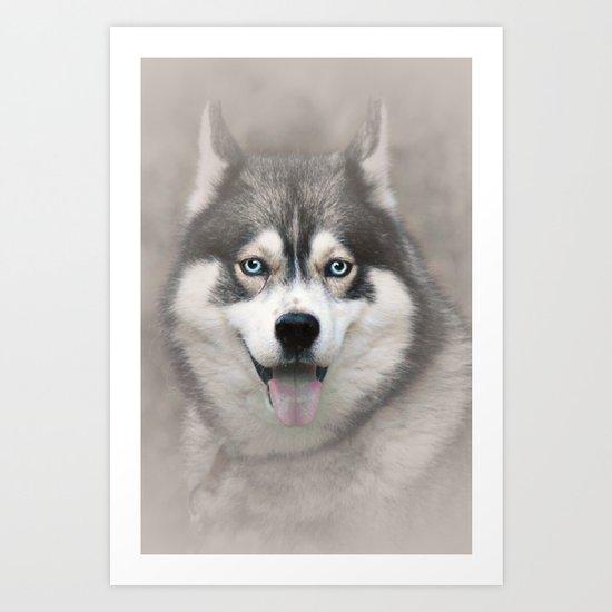 Siberian Husky 2 Art Print