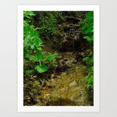 Mounds State Park, IN Art Print