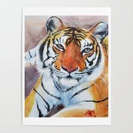 Priya Tigress Poster