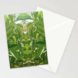 Jungle Mirror Stationery Cards