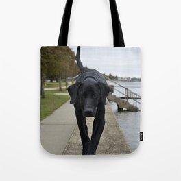 Sirius Tote Bag