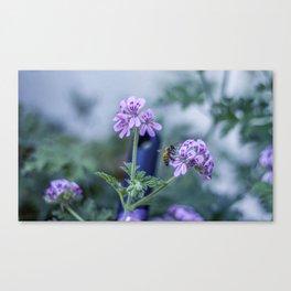 Spring Blues Canvas Print