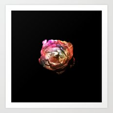 Flower in the Dark Art Print
