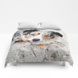 Australian Shepherd Comforters