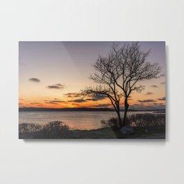 Tree silhouette at sunset Metal Print