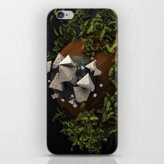 SWWLB iPhone & iPod Skin