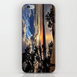 Hensley Lake iPhone Skin