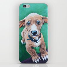 Cooper iPhone & iPod Skin