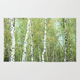 the birch forest III Rug