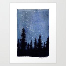 Starry Pines Art Print