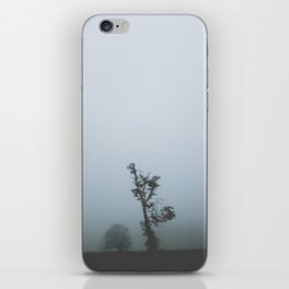 Black Forest Solitude iPhone Skin