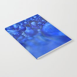 Fusions-1 Notebook