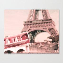 Paris in Blush Pink I Canvas Print