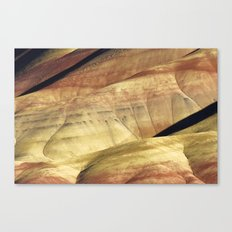 Painted III Canvas Print