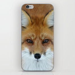 I can see into your soul iPhone Skin