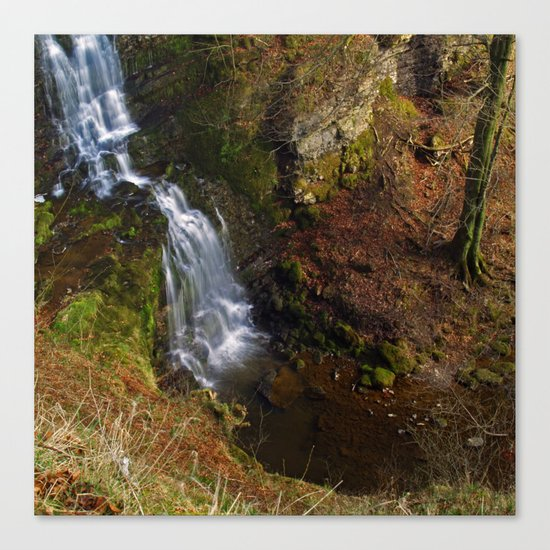 Scaleber Force 2 Canvas Print