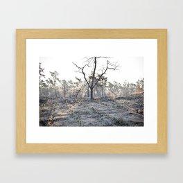 -14 degrees celsius Framed Art Print