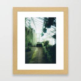 Mattsan Framed Art Print