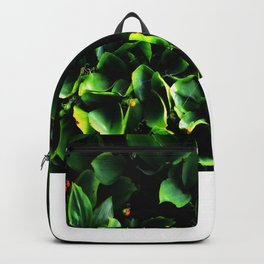 Hidden Gems Backpack