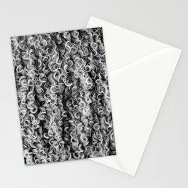 "Mohair ""Hair"" Stationery Cards"