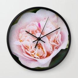 Strawberry Blonde Camellia Flower Wall Clock