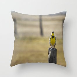 Have Audience Will Sing Throw Pillow