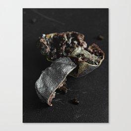 Silver Fruit 2 Canvas Print