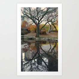 Reflect! Art Print