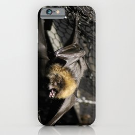 Hangin' On iPhone Case