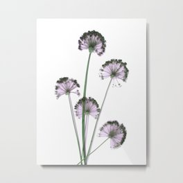 Pink flowers . wallpaper , flower decor, printable art Metal Print