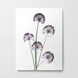 Pink flowers . wallpaper , flower decor, printable art Metal Print