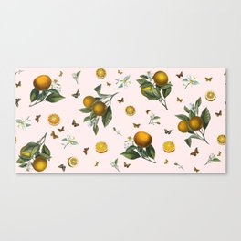 Oranges and Butterflies in Blush Canvas Print