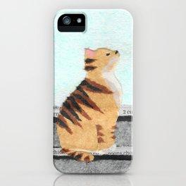 Cat, Lanterns, Paper Collage iPhone Case