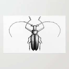 Beetle hand-drawn in the style of vintage etchings Rug