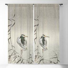 Kwak in rain (1900 - 1936) by Ohara Koson (1877-1945) Blackout Curtain