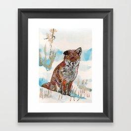 Sitting Fox Framed Art Print