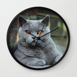 Diesel the cat ! Wall Clock
