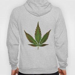 Hemp Lumen #1 marijuana, cannabis Hoody