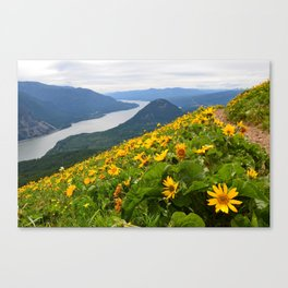 Dog Mountain Canvas Print