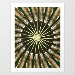 Cactus Garden Kaleidoscope 11 Art Print