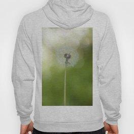 Dandelion in LOVE- Flower Floral Flowers Spring Hoody