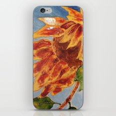 Turns to the wind sunflower | Tourne-au-vent iPhone & iPod Skin