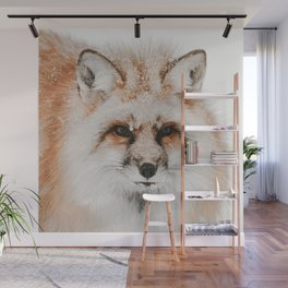Red Fox Photo   Wildlife Photography   Red Fox In The Snow Wall Mural