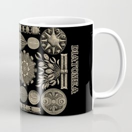 """""""Diatomea"""" from """"Art Forms of Nature"""" by Ernst Haeckel Coffee Mug"""