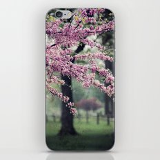 Blossoms for the Road ahead iPhone & iPod Skin