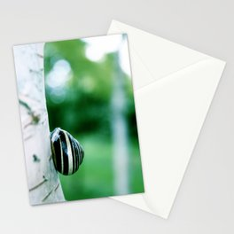 Snail on Silver Birch Stationery Cards