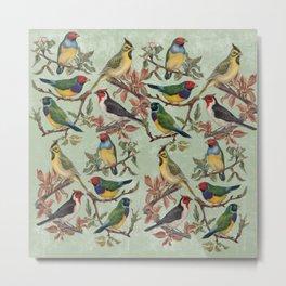 Vintage Birds Metal Print