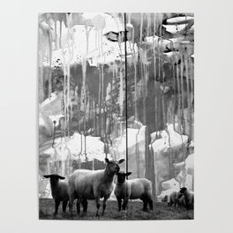ARTland sheeps bw Poster